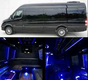 12 Passenger Sprinter Party Bus Atlanta