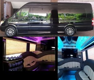 12 Passenger Luxury Sprinter party Bus